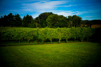 Wineries 2014